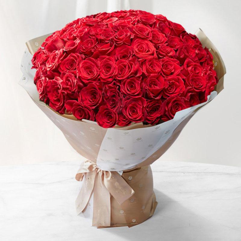 99支红玫瑰,哥伦比亚进口大头玫瑰