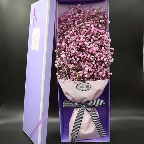 粉色满天星盒装